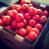 www.farmfoodiefitness.com