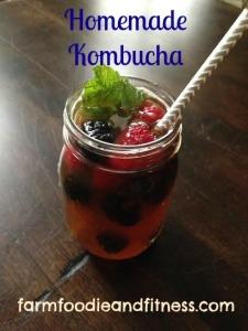kombucha1